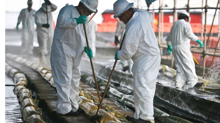 3f9ddfdd-Gulf Oil Spill