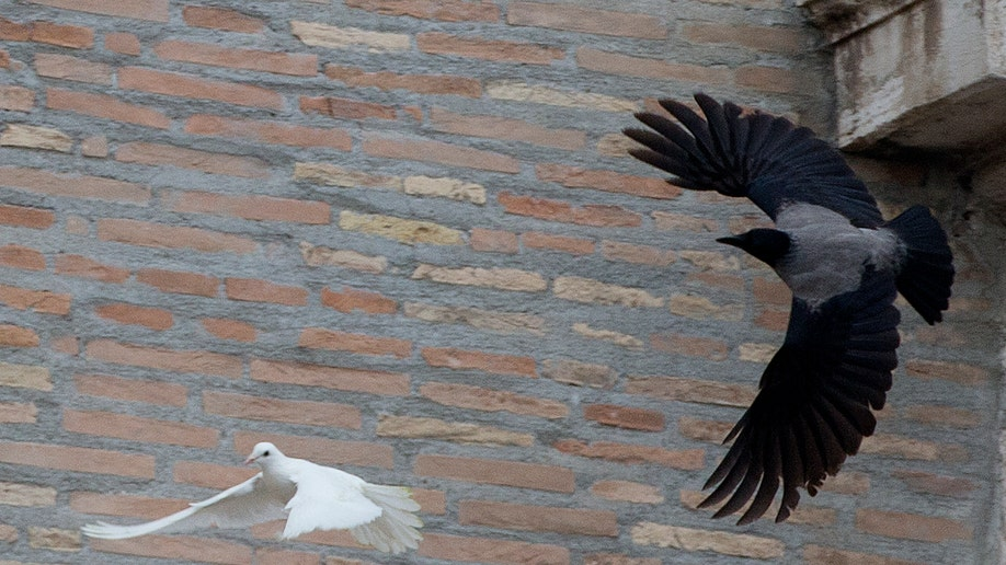 Vatican Pope's  Doves Attacked