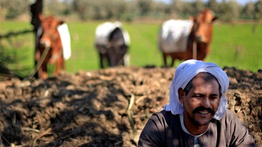 Mideast Egypt Seeds Of Dissent