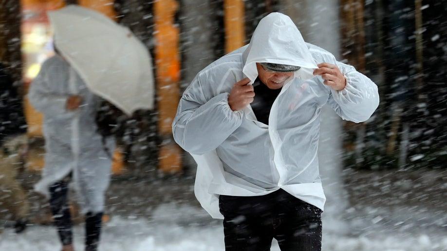 86ac2d7e-Japan Snow