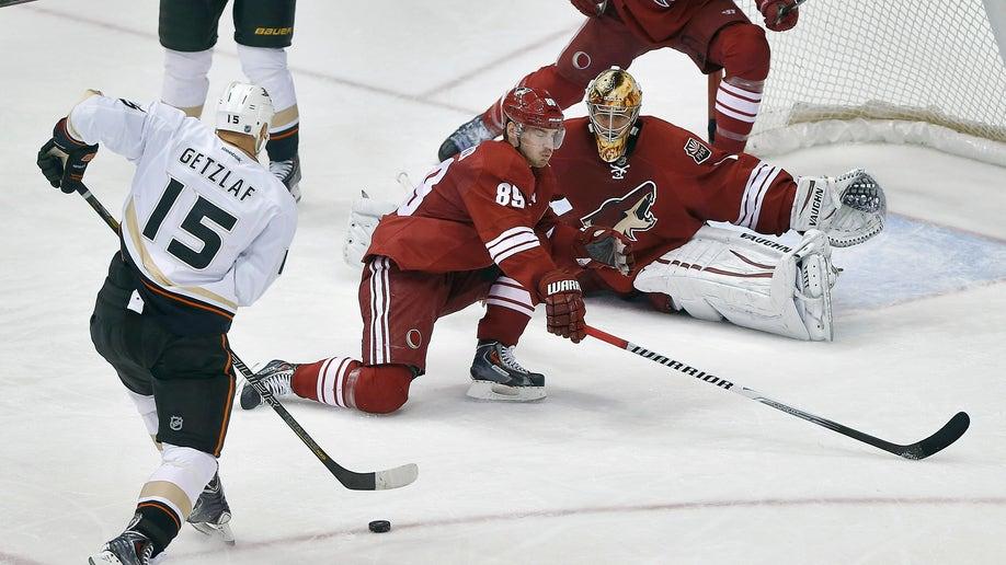 Ducks Coyotes Hockey