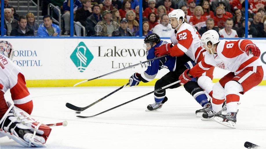 fde48856-Red Wings Lightning Hockey