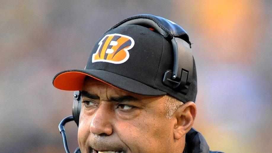 d3c9a69d-Bengals Steelers Football