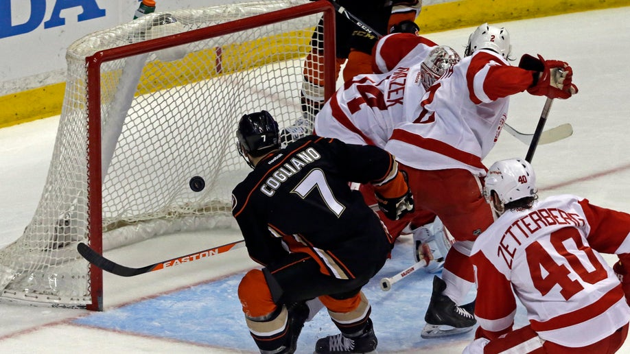 97777f53-Red Wings Ducks Hockey