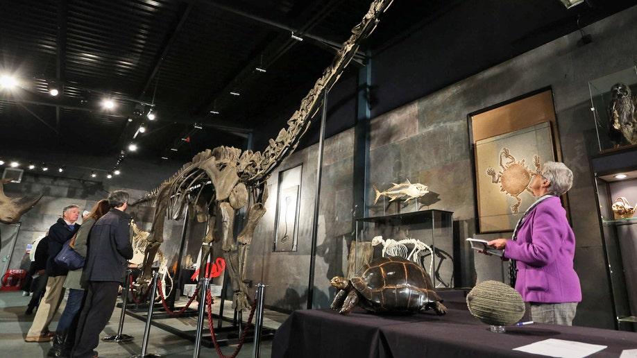 Britain Dinosaur Auction