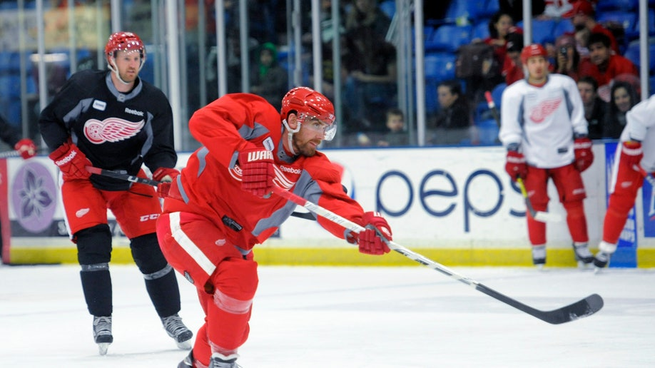 f0003b48-NHL Labor Red Wings Camp Hockey