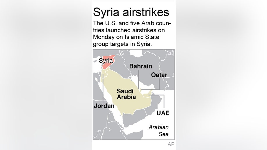 ee3dcf63-SYRIA AIRSTRIKES