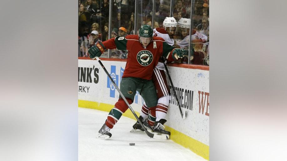 2e8a351d-Coyotes Wild Hockey