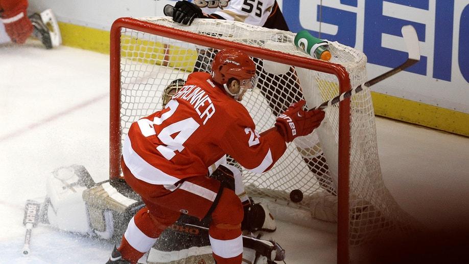 799c0d0c-Ducks Red Wings Hockey