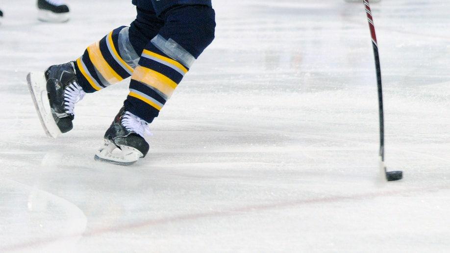 237bff05-Senators Sabres Hockey