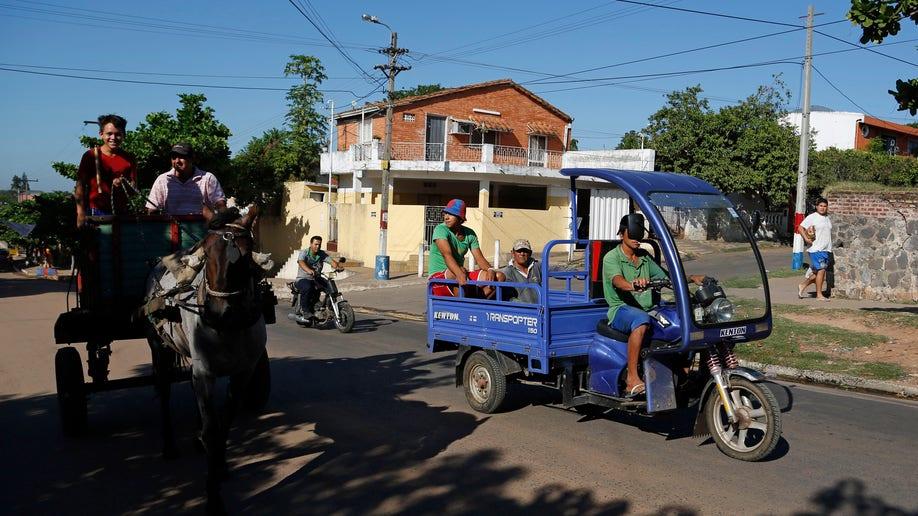 50e33bbf-Paraguay Cart Horses