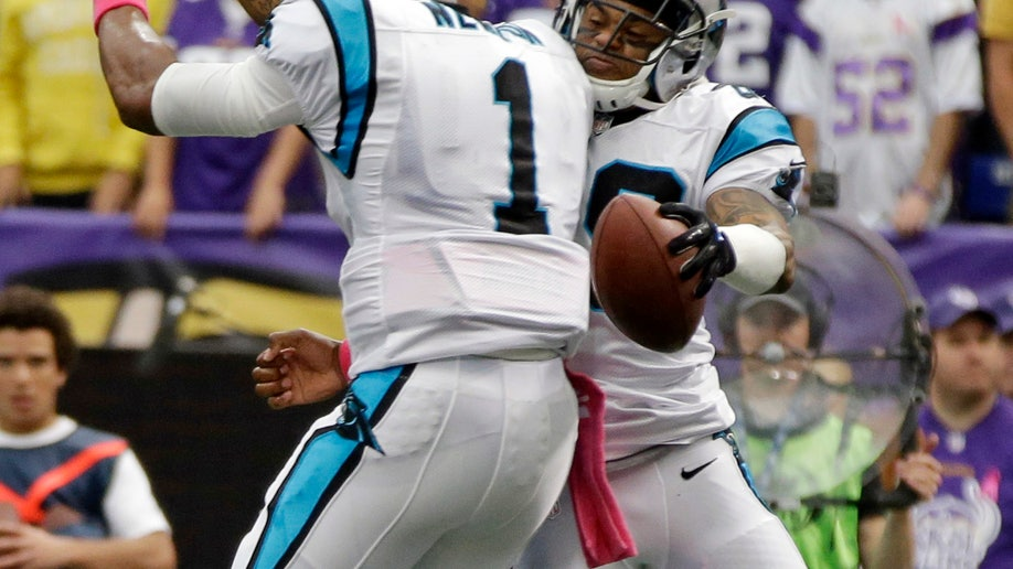 2311d441-Panthers Vikings Football