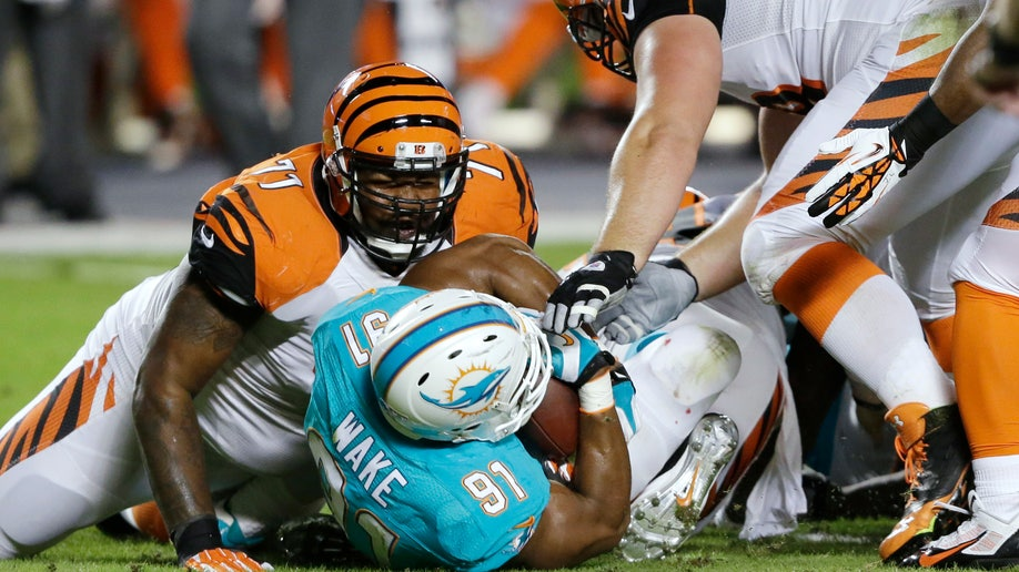775347bb-Bengals Dolphins Football