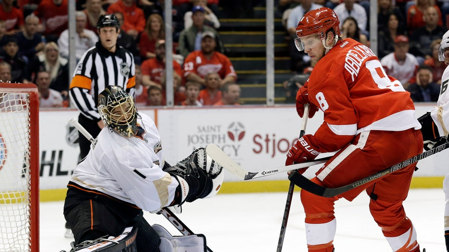443f2429-Ducks Red Wings Hockey