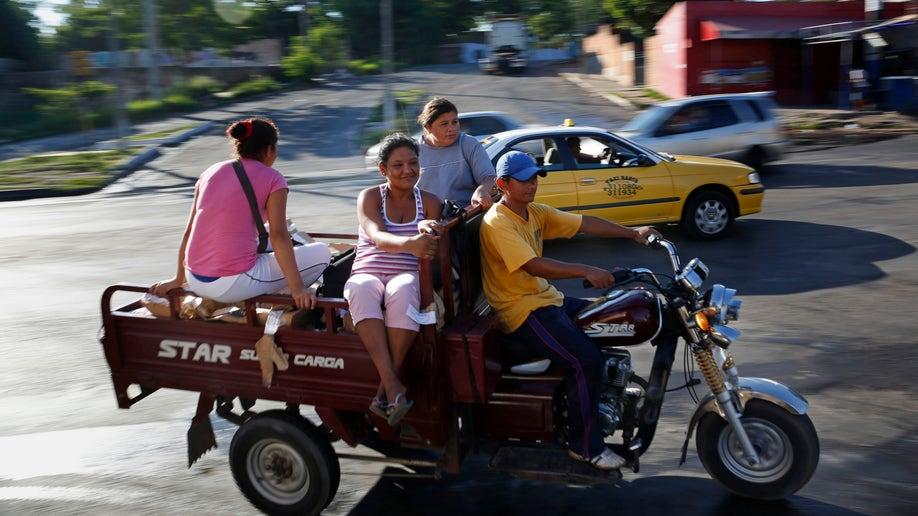 c85e296c-Paraguay Cart Horses