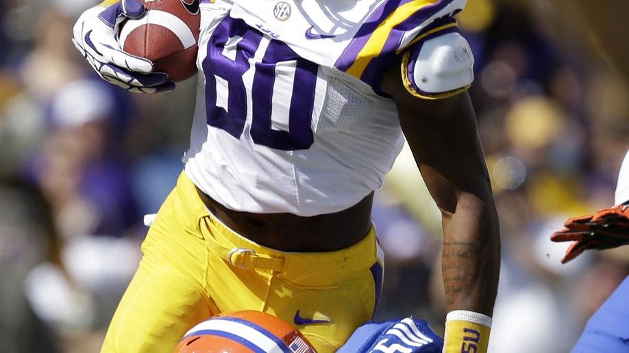 a2843306-Florida LSU Football