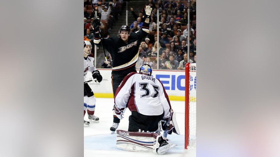 50fa6c65-Avalanche Ducks Hockey