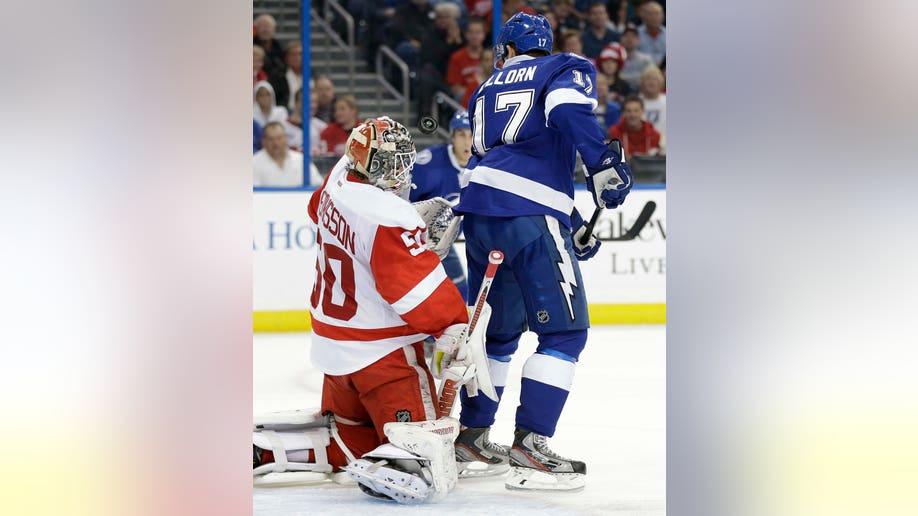 43c91845-Red Wings Lightning Hockey
