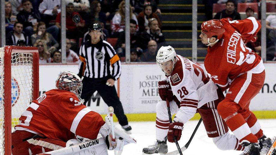 b5b2b65b-Coyotes Red Wings Hockey