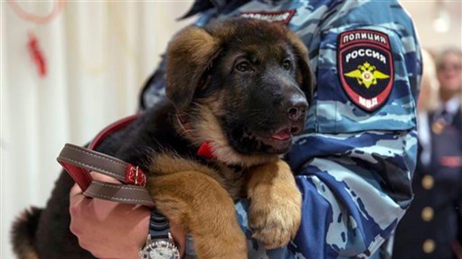 69e76f3d-APTOPIX Russia Paris Attacks Puppy