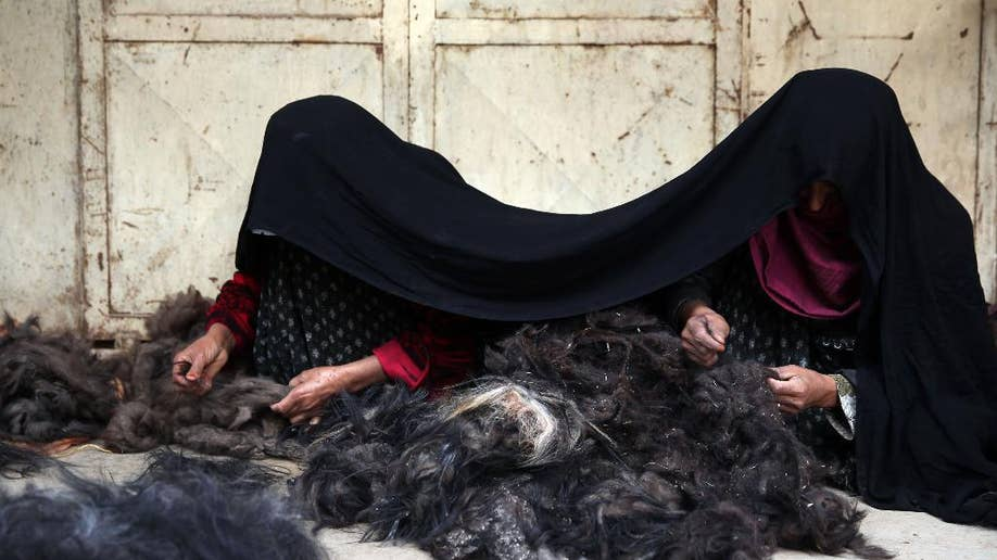 Afghan goat farmers eye luxury niche market for their cashmere, once