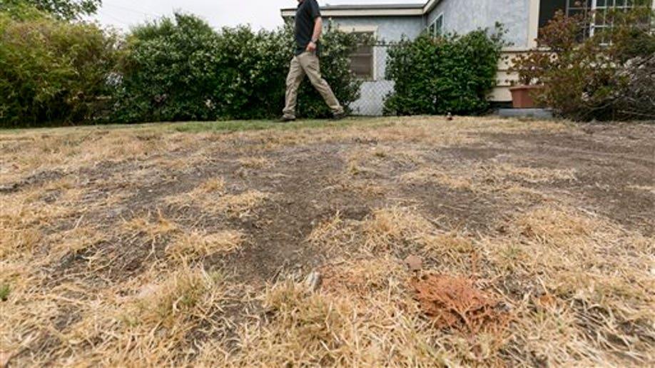 f63a0a2a-California Drought-Brown Lawns