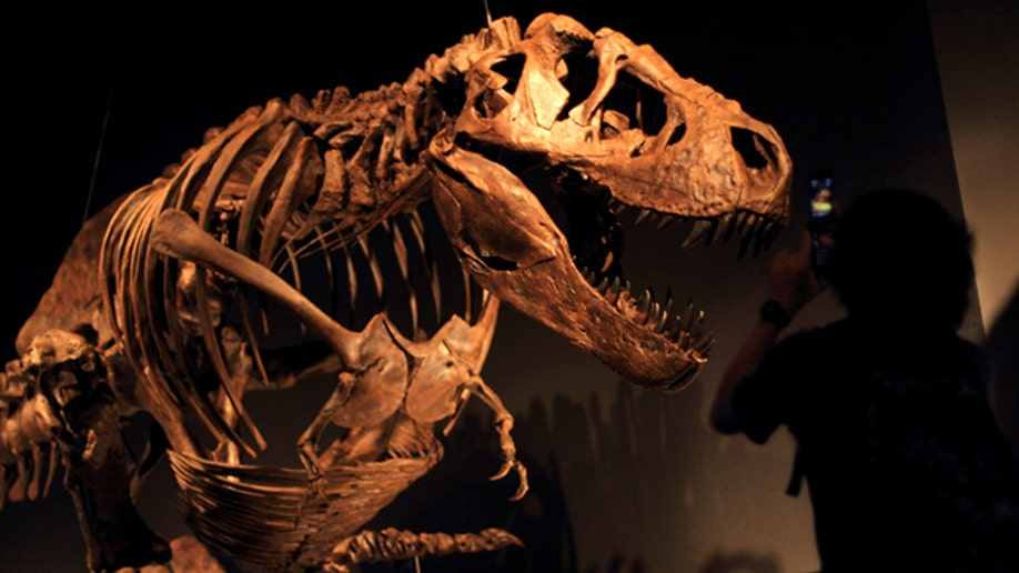 Japan Dinosaurs Expo