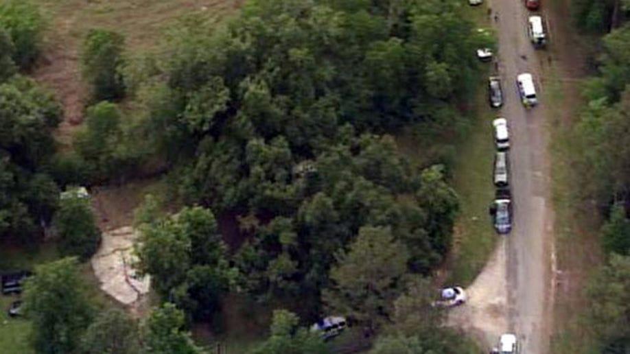 274fffab-Texas Search-Bodies