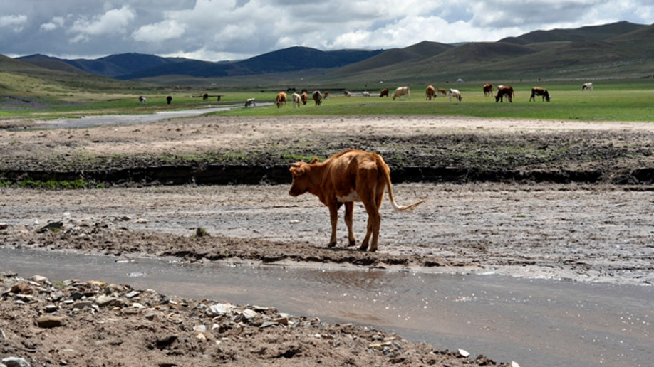70f6e184-Travel Trip Inner Mongolia