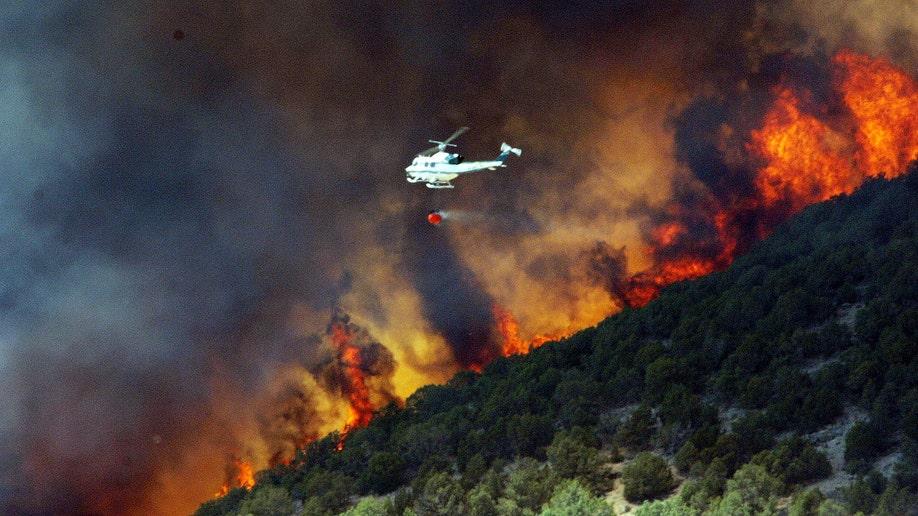 Western Wildfires guns
