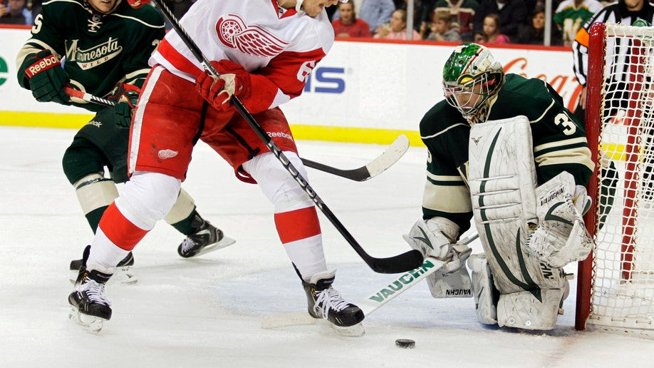 Red Wings Wild Hockey