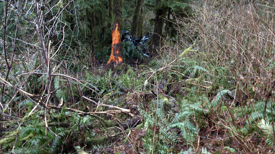 ce13c304-Fatal Crash Children Rescued