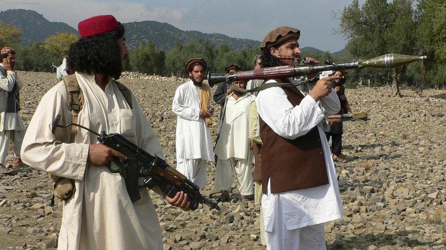 e96b8fdb-Pakistan Drone Strike