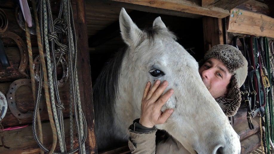 37addb3f-Romania The Horse Rescuer