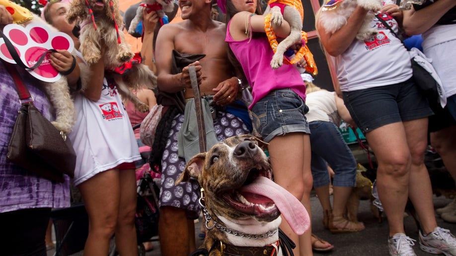 b37de2ac-Brazil Carnival
