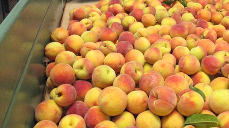 b27dedc2-Food And Farm Peaches To Mexico
