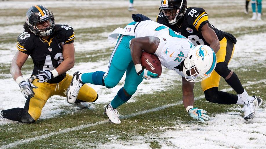 b2f05609-Dolphins Steelers Football