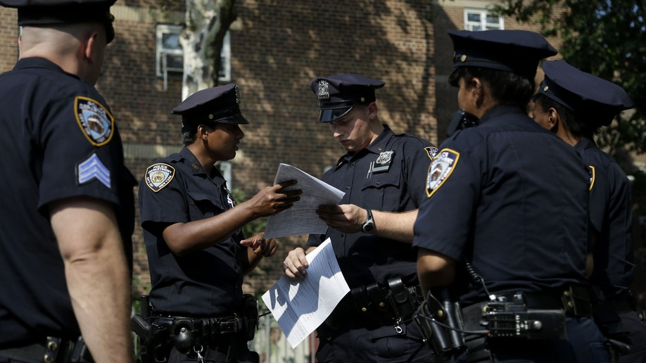 ee5a21b2-Stop and Frisk