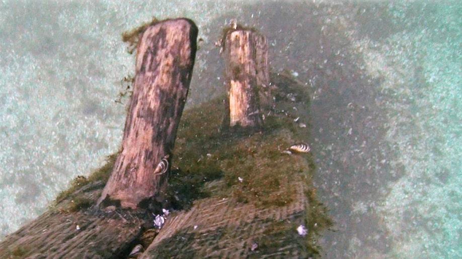 5a76e8ec-Griffin Shipwreck