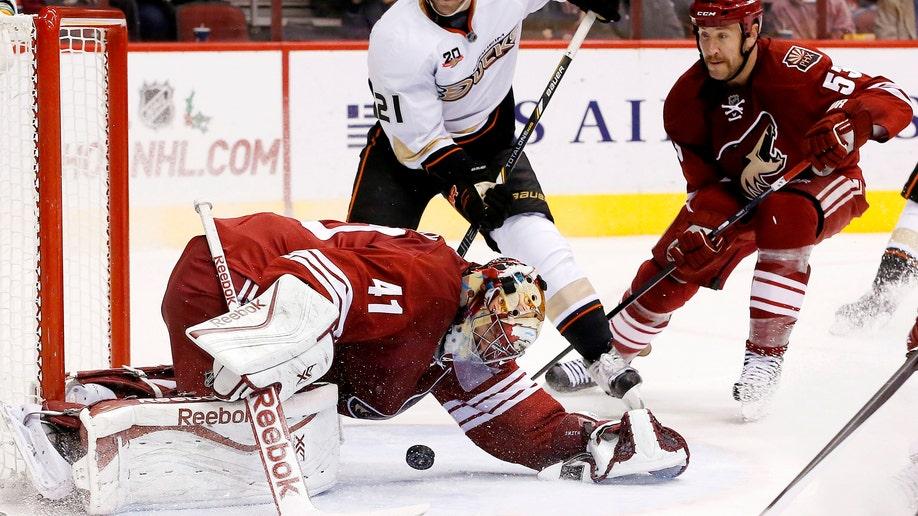 511d6647-Ducks Coyotes Hockey