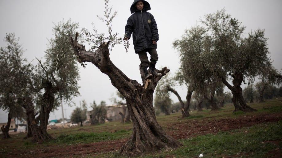 9aba1670-Mideast Syria