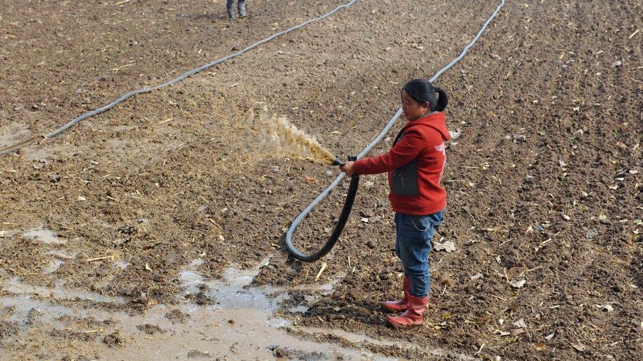 bddd759f-China Land Reform
