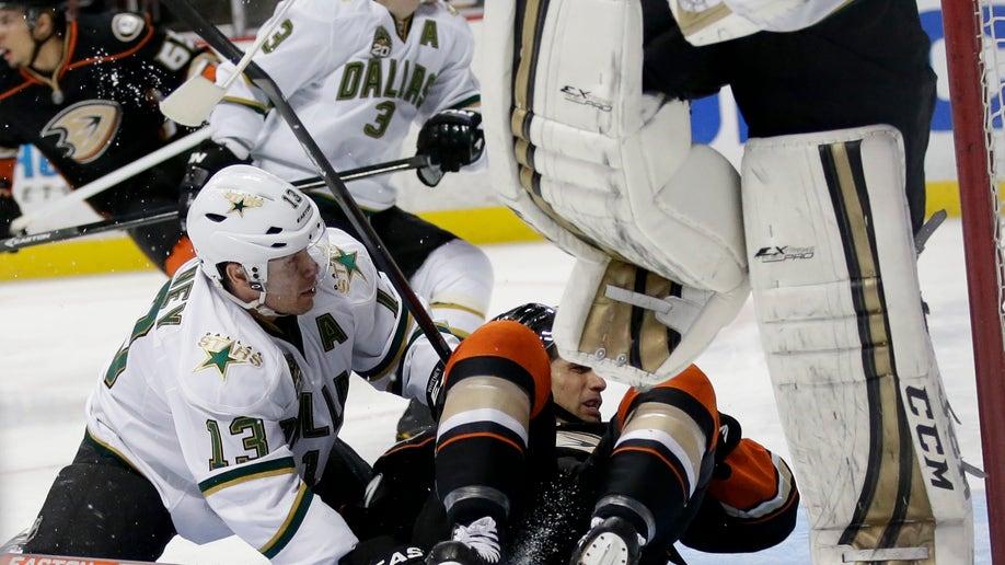 3ec90015-Stars Ducks Hockey