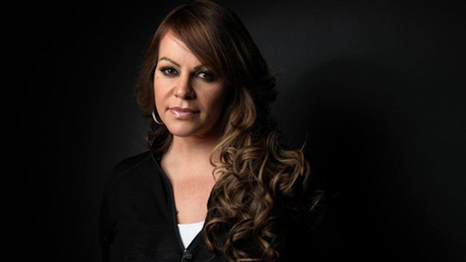 Mexico Singer's Plane Missing
