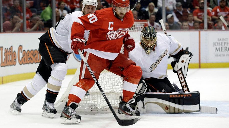 73252d2d-Ducks Red Wings Hockey