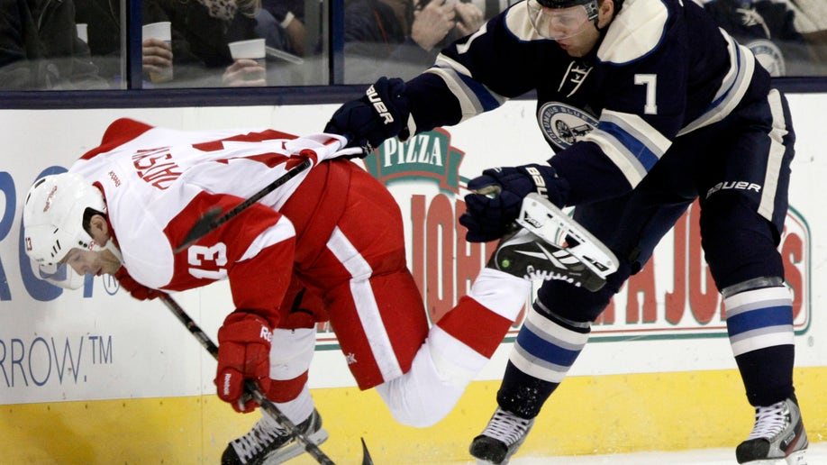 a6e3bebe-Red Wings Blue Jackets Hockey