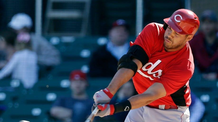 Reds Diamondbacks Spring Baseball