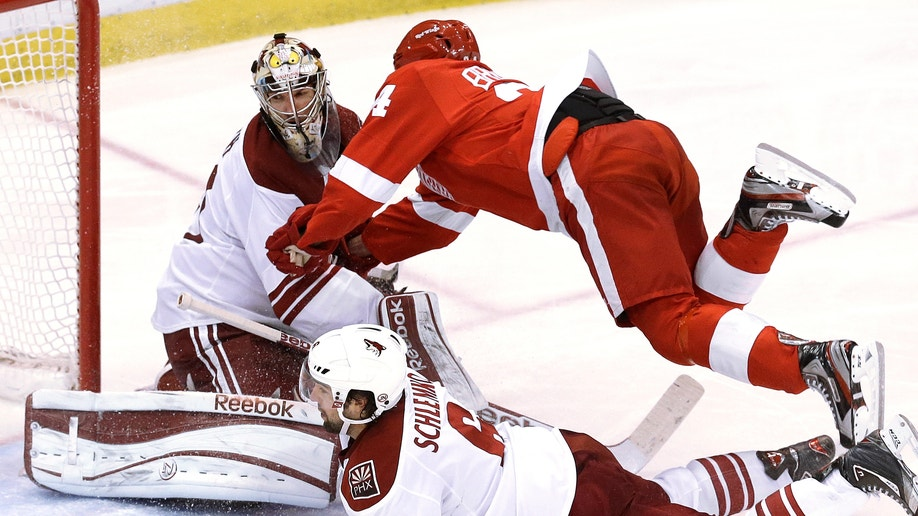 Coyotes Red Wings Hockey