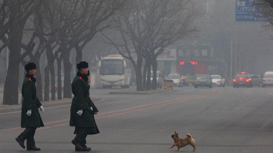 987cec49-APTOPIX China Daily Life