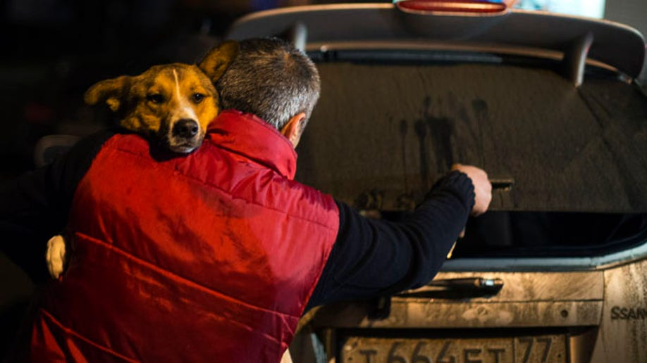 e5804438-Sochi Saving the Dogs Olympics